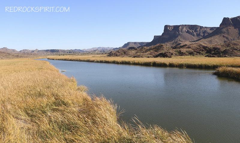 Bill Wiliams River